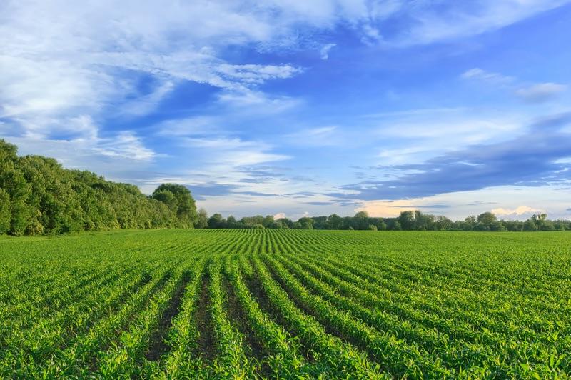 ATSA - Agricultura